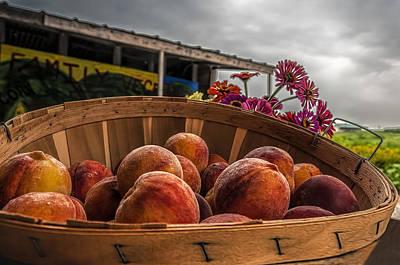 Photograph - Peaches by Maria Coulson