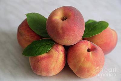 Peachy Original by Tracy Hall