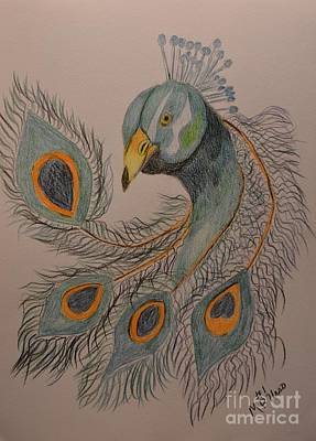 Drawing - Peacock #1 - Drawing by Maria Urso