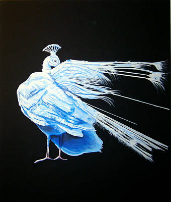 Painting - Peacock 2 by Chris Benice