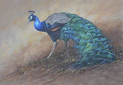 Art Print featuring the painting Peacock by Alan M Hunt