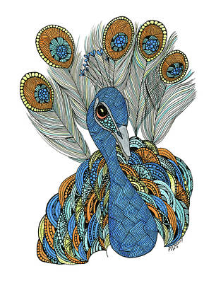 Drawing - Peacock by Barbara McConoughey