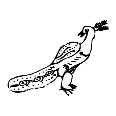 Peacock Bird Art Print by Karl Addison