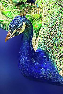 Photograph - Peacock Blued by Alice Gipson