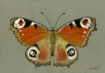 Peacock Butterfly Original by Juan Bosco