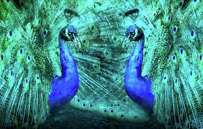 Digital Art - Peacock Confrontation by Georgiana Romanovna