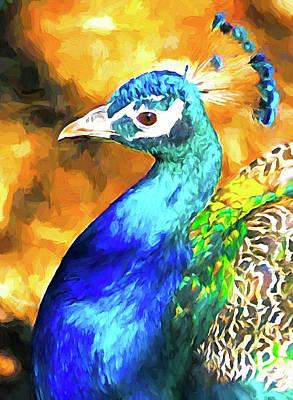 Mixed Media - Peacock by Dennis Cox Photo Explorer