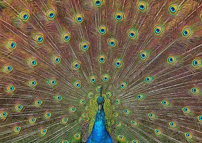 Photograph - Peacock Fanfare by Diane Alexander