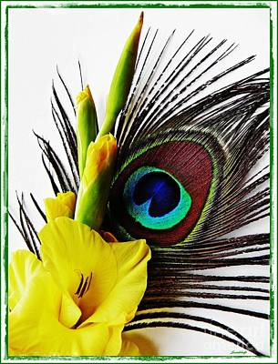 Photograph - Peacock Feather And Gladiola 3 by Sarah Loft