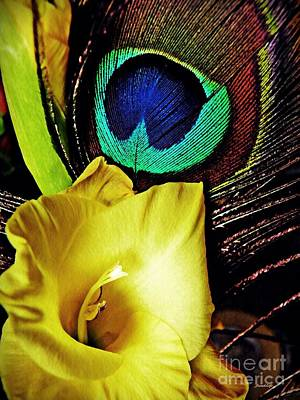 Photograph - Peacock Feather And Gladiola by Sarah Loft