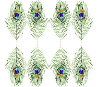 Digital Art - Peacock Feathers by D Renee Wilson
