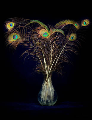 Photograph - Peacock Feathers In Vase by Rudy Umans