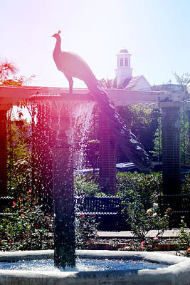 Photograph - Peacock Fountain 1 by Valerie Reeves