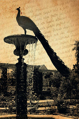 Digital Art - Peacock Fountain 4 by Valerie Reeves