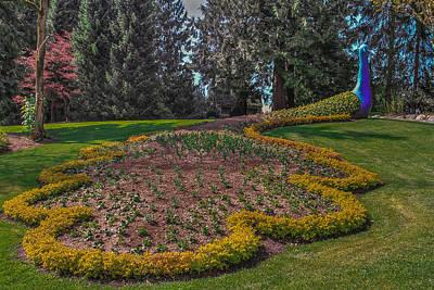 Peacock Garden Art Print by Eti Reid
