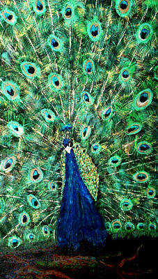 Peacock Art Print by Mikki Alhart