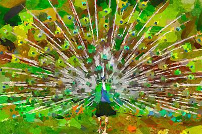 House Pet Digital Art - Peacock Nature by Yury Malkov