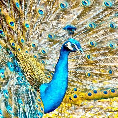 Digital Art - Peacock Paradise by Charmaine Zoe