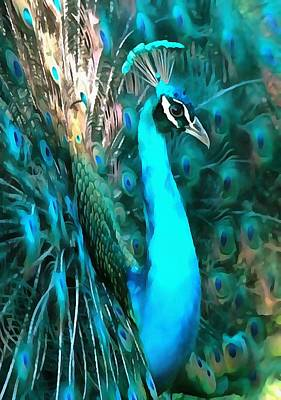 Painting - Peacock Plumage by Tracey Harrington-Simpson