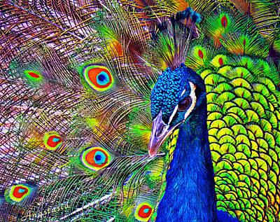 Digital Art - Peacock Portrait by Anastasia Savage Ealy