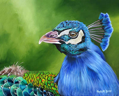 Painting - Peacock Profile by Phyllis Beiser