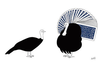 Fans Drawing - Peacock by Seth Fleishman