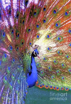 Displays Painting - Peacock Wonder, Colorful Art by Jane Small