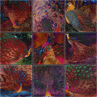 Digital Art - Peacocks by Barbara Berney
