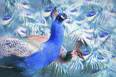 Peafowl Art Print by Barbara Hymer