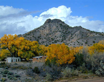 Photograph - Peak Above Yellow by Joseph R Luciano