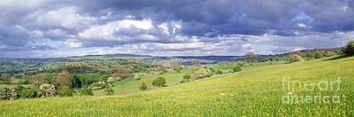 Photograph - Peak District Buttercup Meadow by Warren Photographic