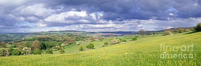 Photograph - Peak District Buttercup Meadow by Warren Photographic