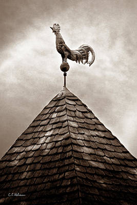 Photograph - Peaked Rooster - Sepia by Christopher Holmes