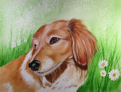 Dachshund Painting - Peanut by Carol Blackhurst