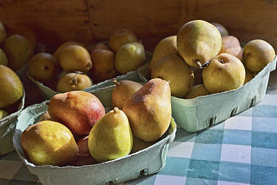 Checked Tablecloths Photograph - Pear Golden by Caitlyn  Grasso