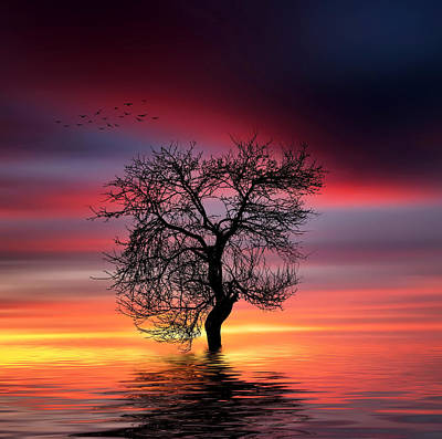 Pear On Lake Print by Bess Hamiti