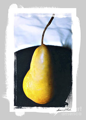 Photograph - Pear Portrait by Sueann Hack