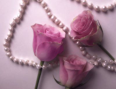 Photograph - Pearls And Roses 2 by Johanna Hurmerinta