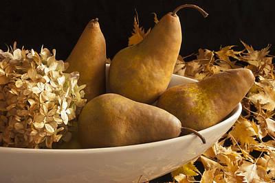 Still Life Photograph - Pears And Hydrangea Still Life  by Sandra Foster