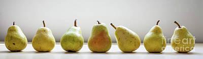 Pears  Art Print by April Ann Canada