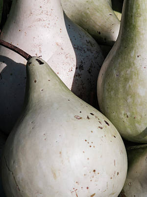 Photograph - Pears by Stewart Helberg