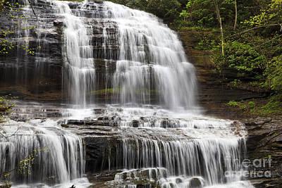 Photograph - Pearson's Falls Closeup by Jill Lang