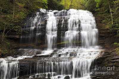 Photograph - Pearson's Falls In North Carolina by Jill Lang