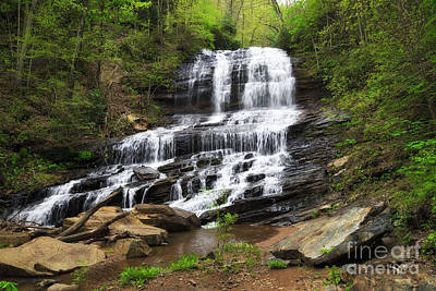 Photograph - Pearson's Falls In Tryon by Jill Lang