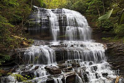 Photograph - Pearson's Falls by Jill Lang