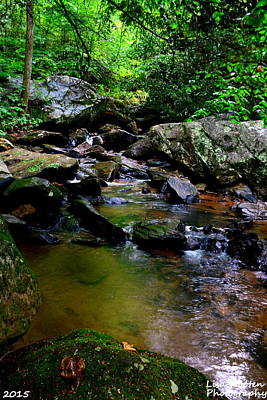 Photograph - Pearson's Falls Trail by Lisa Wooten