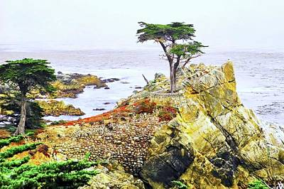 Photograph - Pebble Beach Lone Cypress Tree by Kirsten Giving