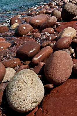 Photograph - Pebble Beach by Pedro Cardona