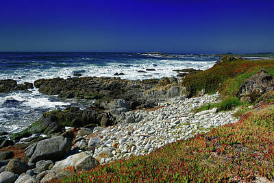 Photograph - Pebble Beach by Renee Hardison