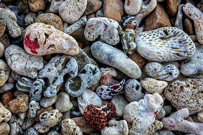 Photograph - Pebbles And Coral Background by Alexey Stiop